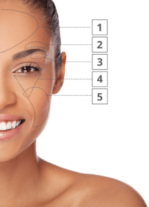 Instantly Ageless target areas
